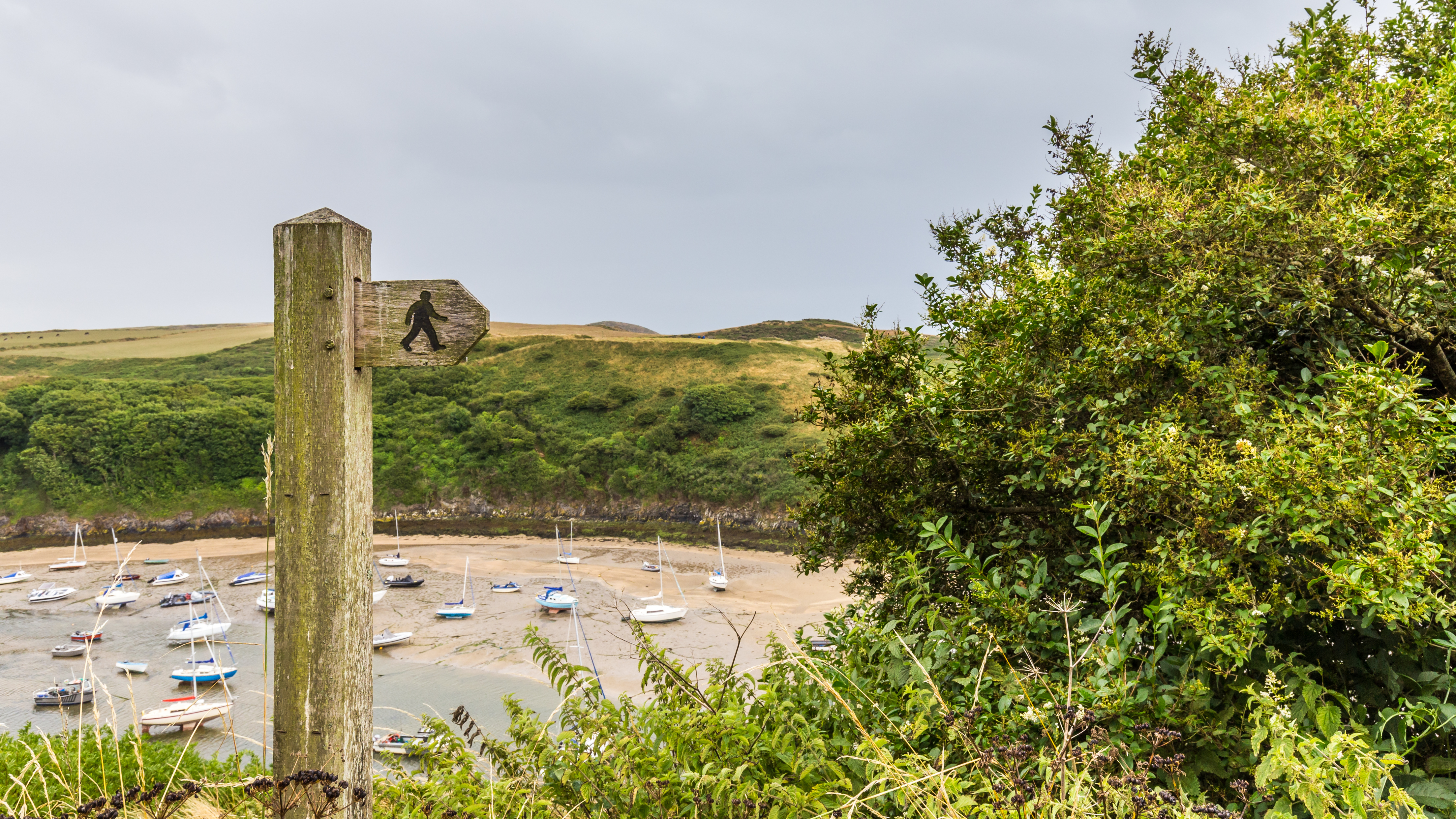 Wooden footpath sign with Solva Harbour in background