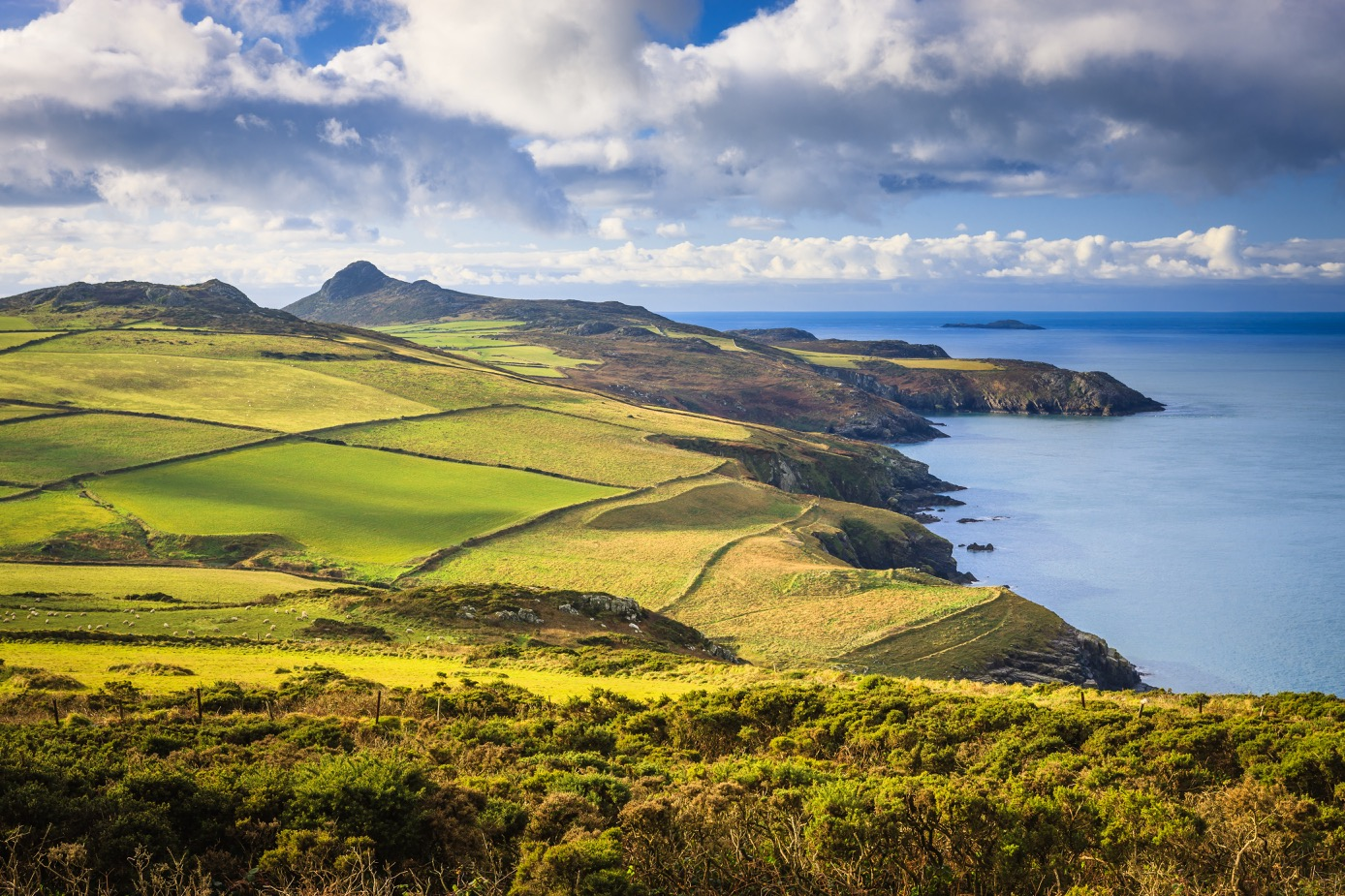 Photograph of the Pembrokeshire Coast looking south from Penberi towards St David's Head.