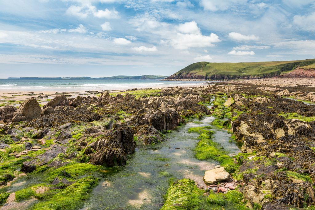 Wave-cut platform geological formation on the beach at Manorbier