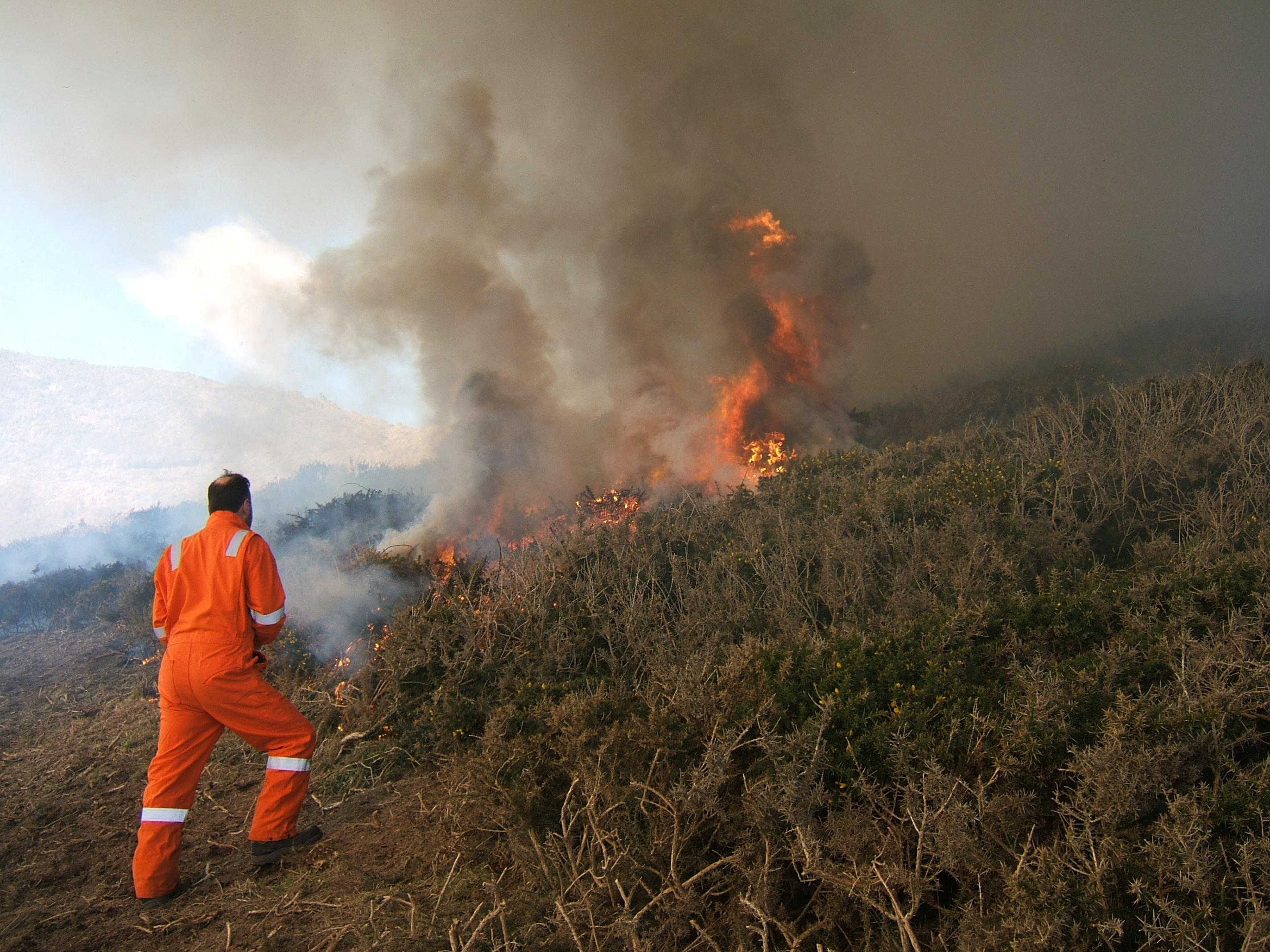 Controlled burn at Tresinwen