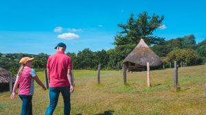 Iron Age roundhouses at Castell Henllys Iron Age Village