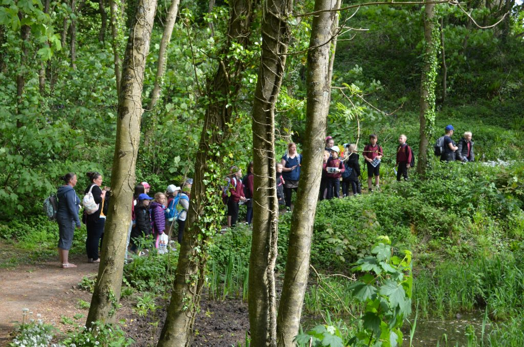 Primary school pupils pond dipping at Stackpole