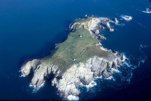 St Margaret's Island near Caldey Island, Tenby, Pembrokeshire Coast National Park, Wales, UK