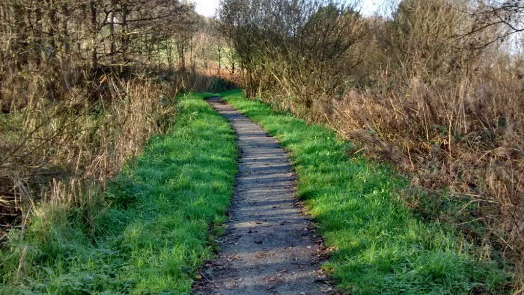 Poppit Marsh Wheelchair Path