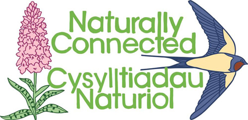 naturally connnected logo