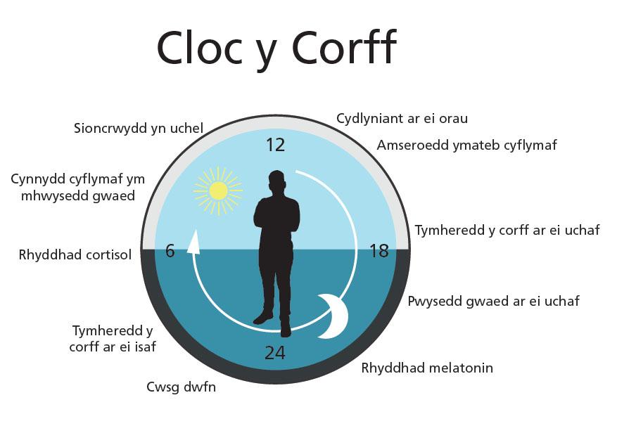 Infograffig Cloc y Corff