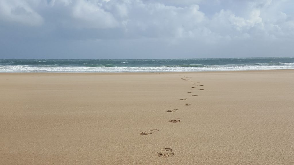 Footprints in the sand going towards the sea