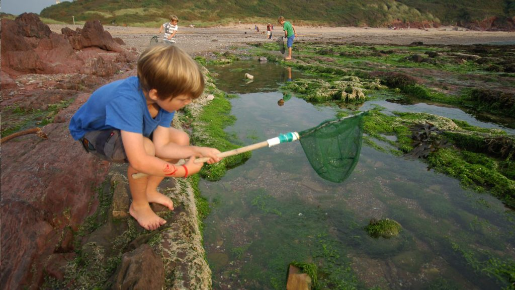 Child holding fishing net crouching over a rockpool on a beach